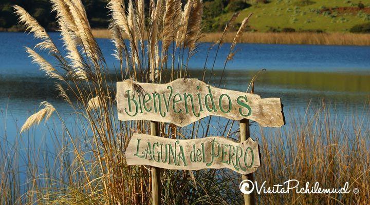 camping lagoon entrance Cahuil dog pichilemu