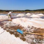 salinero extracting salt in Cahuil