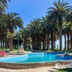 pileta y palmeras canarias parque ross pichilemu