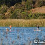 stand up paddle laguna del perro cahuil pichilemu
