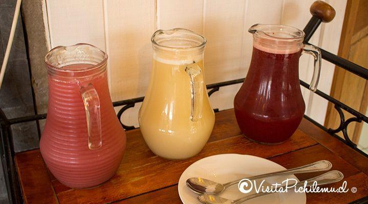 jugos naturales desayuno cabanas lomas de pinares pichilemu