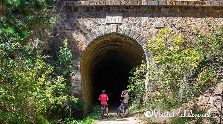 entrada tunel el arbol ferrocarril de pichilemu