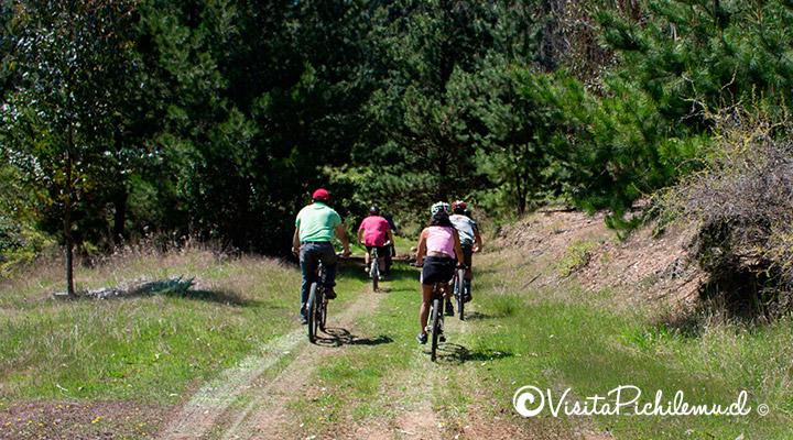 inicio ruta tunel el arbol pichilemu
