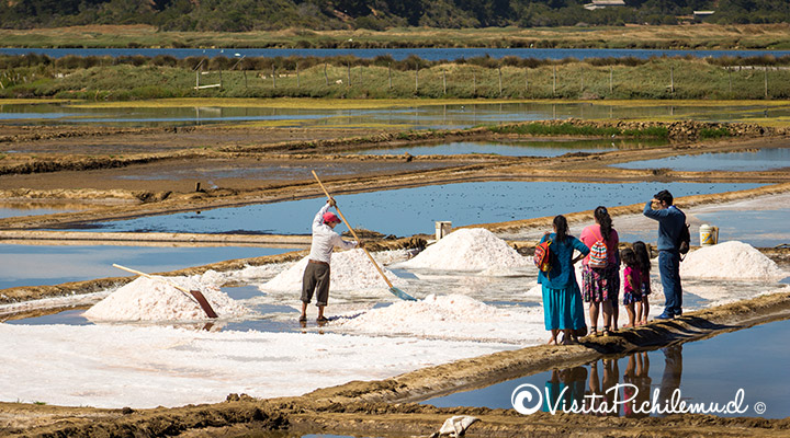 walk in the salt marshes of Cahuil